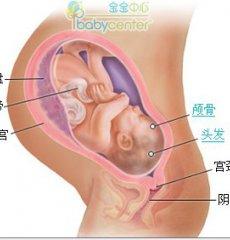 剖腹产给宝宝带来的六大伤害