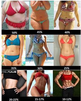 24―55岁,社会中坚力量肥胖问题严