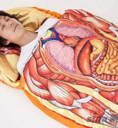 人体最易患癌的10个器官