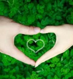 如果心中有爱 就把健康当成责任