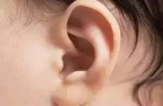 按压耳穴排毒养颜 美丽来得如此简单