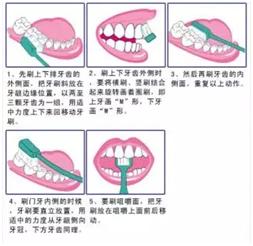牙菌斑及沉积物将逐渐钙化为牙石