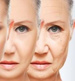 人体什么时候开始走向衰老?