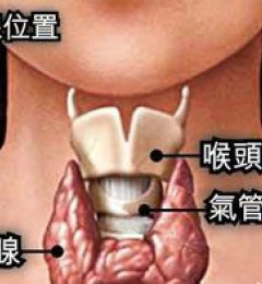 甲状腺功能亢进可以治愈吗?