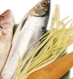 预防老年痴呆 从每天的饮食做起