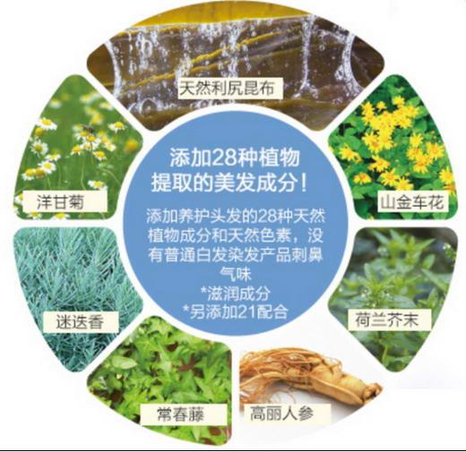 添加多种植物提取的美发成分精华