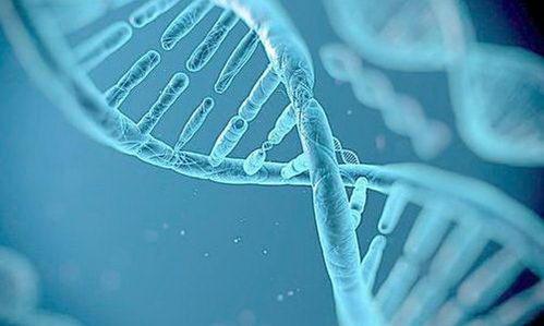沈向明草本研究新进展推动人类抗衰进程
