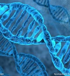 伊瑞可临床案例统计,肺癌存在遗传性影响