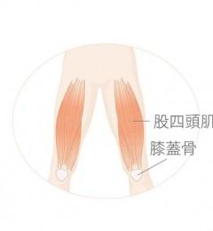 放低姿势锻炼大腿肌  膝盖与腰部的强化就可以轻松实现