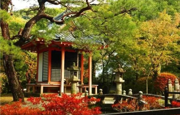 旅游+体检 日本修心养身健康之旅