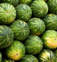 吃完西瓜后喝水 会增加肠胃感染的风险