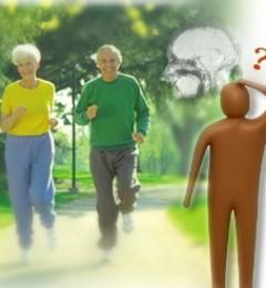 中高强度的运动可助老年人预防无症状中风