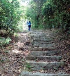 心脏病患者登山晕倒后不治 冠心病者需谨慎参加运动