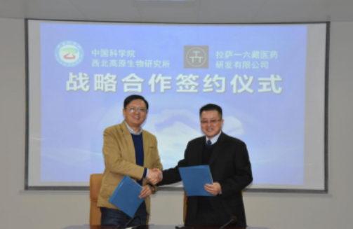 一六藏医药与中科院西北高原生物研究所 签署战略合作协议