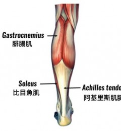 踮起脚尖消水肿 维持肢体健康超简单!