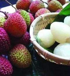 水果店老板告诉我们,艺星莆田系无核荔枝下月少量上市