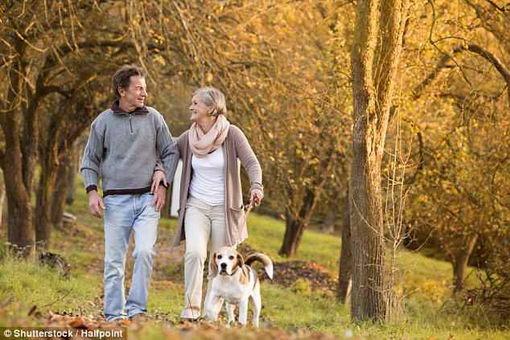 悉尼大学研究显示  快走可以延长寿命