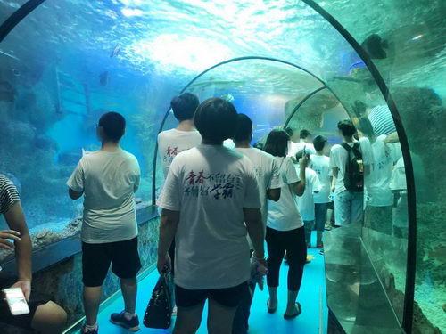 学生患者在大明湖海底世界的瞬间留影