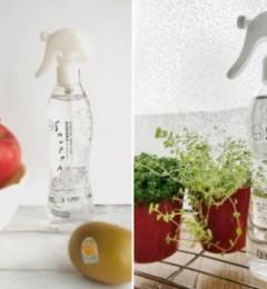 SHUPPA解锁水果保鲜新姿势 开启健康生活新潮流