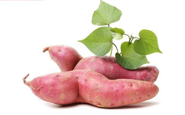 高纤解便秘、抗氧化 当属美味地瓜叶