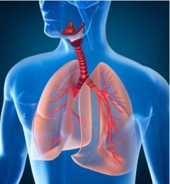 上海健桥哮喘医院指导  保护气道纤毛 预防呼吸疾病