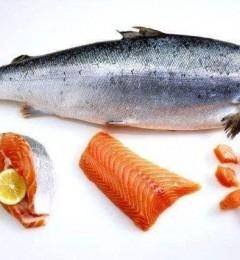 生吃鱼类食物易患食源性寄生虫病