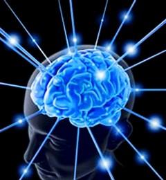 人脑不是电脑 懂得养护才能保持健康状态