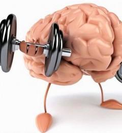 为什么有些人的大脑记忆力很强?揭开大脑记忆的20个秘密