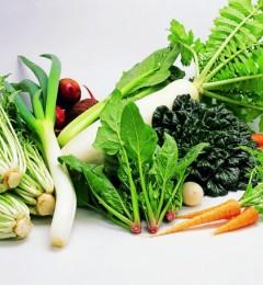 吃蔬菜,就要吃最新鲜的!