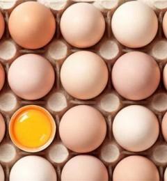 蛋蛋面膜效果怎么样?看看这篇文章你就知道了
