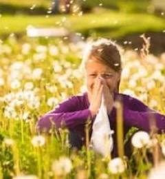日本防霾口罩竟如此神奇,完美解决春季花粉过敏问题