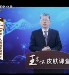 河北电视台公共频道:王家怀讲皮肤―人类的忠诚卫士
