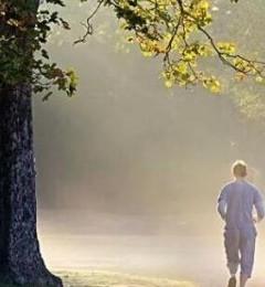 雾天户外污染大 不宜进行运动锻炼