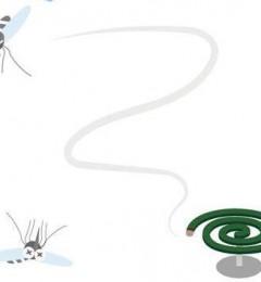 大群好友出外踏青 蚊子为何独爱自己?