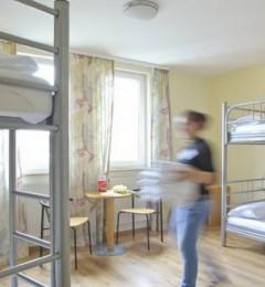 宿舍蟑螂爬上床?用榄菊还宿舍清净