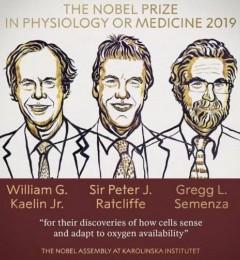2019年诺奖得主告诉我们,身体补氧可远离癌症-雷氧氧疗健康分享