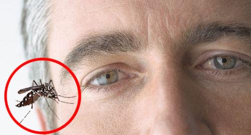 统计发现骨痛热引发眼疾症状的病人有增加趋势