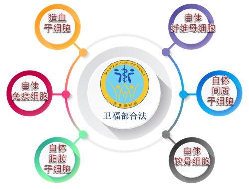 爱尔丽集团开创亚洲首家面向医学美容的纤维母细胞实验室