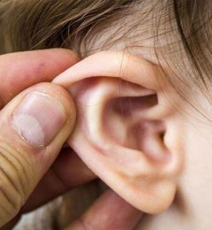 英国著名医学期刊《Lancet》研究即指出耳朵有褶痕 是心脏或心血管功能不好的警讯