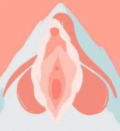 女性阴蒂的存在不只是为了乐趣 还有更重要作用