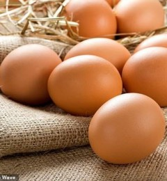 食用鸡蛋会不会致血液中的胆固醇含量升高