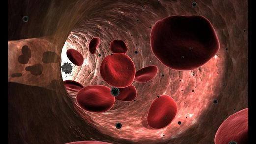 什么原因导致女性血管更易衰老