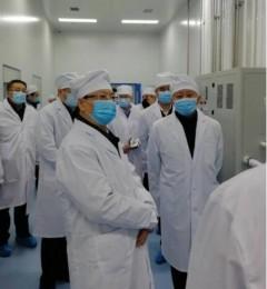吉林省长景俊海、省政协主席江泽林先后莅临金赛药业调研