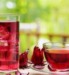 洛神花天然植化素高,常饮能清除自由基、降血脂、降胆固醇