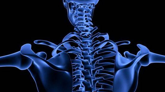 科学家发现人类自然维持骨原蛋白的方法是运动