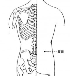 常常腰酸痛 每日搓腰眼 益肾又壮腰