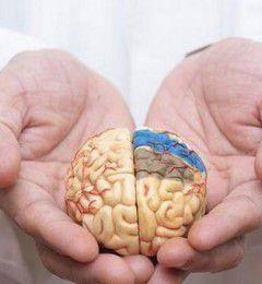 记忆力衰退 走路常跌倒 失智来得那样快!