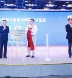 武大腾讯揭牌大数据实验室 共建国家级医疗保障创新平台