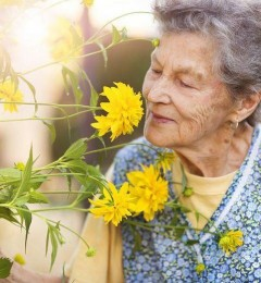 老年痴呆的征兆 从嗅觉能力衰退开始