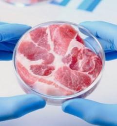 人造肉――2020年最伟大发明之一